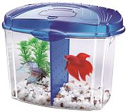 All Glass Aquarium Aqueon Betta Bowl Starter Kit