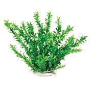 Aquatop Anacharis Like Aquarium Plant Green 12 Inch
