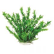 Aquatop Anacharis Like Aquarium Plant Green 20 Inch