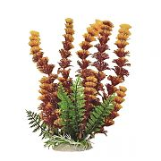 Aquatop Cabomba Fire Aquarium Plant Rust/Orange 12 Inch