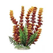 Aquatop Cabomba Fire Aquarium Plant Rust/Orange 6 Inch