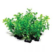 Aquatop Profit Power Pack Bushy Plant Green 5 Inch/10 Pack