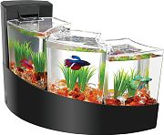 Aqueon Kit Betta Falls Black 2 Gallon