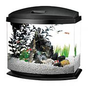 Aqueon Led Minibow Aquarium Kit Black 5 Gallon
