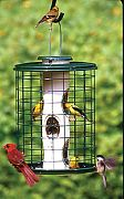 Aububon/Woodlink Avian Series Caged Bird Feeder