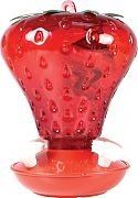 Aububon/Woodlink Strawberry Hummingbird Feeder Red 40 Ounce