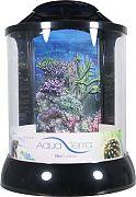 Bio Bubble Aqua Terra With 3d Coral Background Aquarium Black 2 Gallon