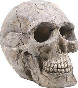 Bio Bubble Human Skull Aquarium Ornament Gray 6.25x3.5x5.5 In