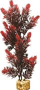 Blue Ribbon Colorburst Florals Large Brush Plant Red