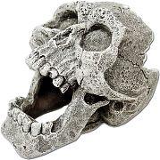 Blue Ribbon Exotic Environments Cracked Human Skull Mini