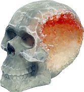 Blue Ribbon Exotic Environments Skull Geode Stone Small