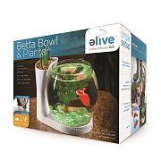 Elive Betta Bowl And Planter White .75 Gallon