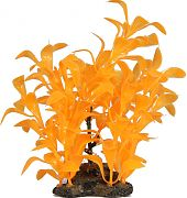 Elive Glow Elements Ludwigia Plant Neon Tangerine 5 Inch/Medium