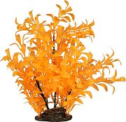 Elive Glow Elements Ludwigia Plant Tangerine 9 Inch/Large