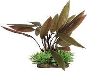 Elive Natural Elements Crypt Plant Red 5 Inch/Medium