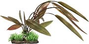 Elive Natural Elements Crypt Plant Red 9 Inch/Large
