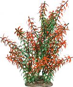 Elive Natural Elements Rotala Plant Red 9 Inch/Large