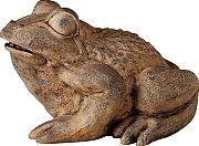 Geoglobal Pond Boss Frog Spitter