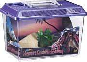 Lee´s Hermit Crab Hideaway Kit