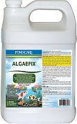 Mars Fishcare Pond Algaefix Gallon
