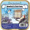 Pine Tree Blueberry Suet Cake