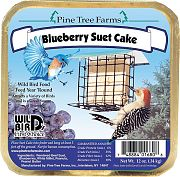 Pine Tree Blueberry Suet Cake