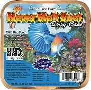 Pine Tree Never Melt Suet