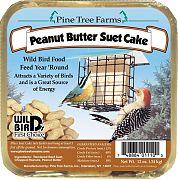 Pine Tree Peanut Butter Suet Cake