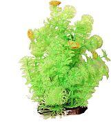 Poppy Bushy Ambuila Aquarium Plant Lime Green 12  Inch