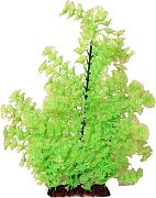 Poppy Bushy Ambuila Aquarium Plant Lime Green 16 Inch