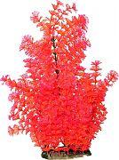 Poppy Bushy Ambuila Aquarium Plant Red 16 Inch