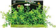 Poppy Bushy Foreground Pod # 6 Inch