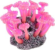 Poppy Button Polyp Aerator Pink