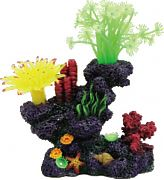Poppy Coral Reef Formation 6x4x7