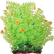 Poppy Extra Wide Bushy Ambulia Aquarium Plant Lime Green 16 Inch