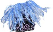 Poppy Hairy Soft Coral Aerator Blue