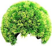 Poppy Moss Cave Hideout Green 4 Inch