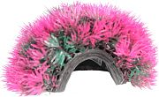Poppy Moss Cave Hideout Purple/Red Purple/Red 4 Inch