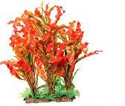 Poppy Specimen Ruffed Sword Aquarium Plant Red/Green 14 Inch