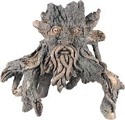 Poppy Sunken Tree Of Knowledge #6 Driftwood 13x8x16