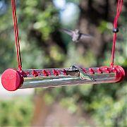 Woodstream 22-Port Hummerbar Hummingbird Feeder Clear/Red 2 Ft