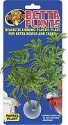 Zoo Med Papaya Betta Plant
