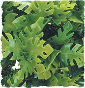 Zoo Med Plant Amazon Phyllos Medium